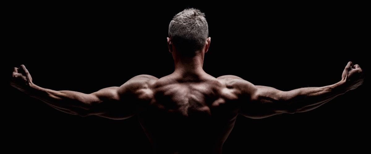 Kraft Kraftsport und Muskelaufbau
