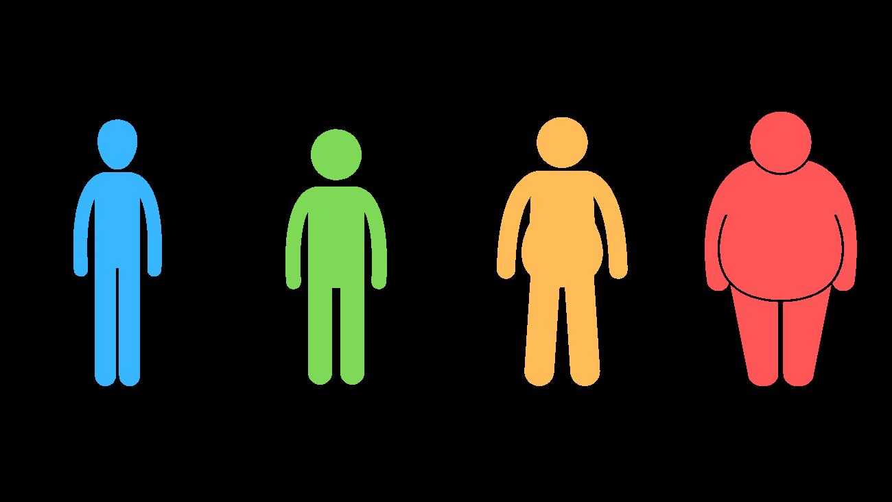 Kategorien des BMI -  Untergewicht, Normalgewicht, Übergewciht, Adipositas