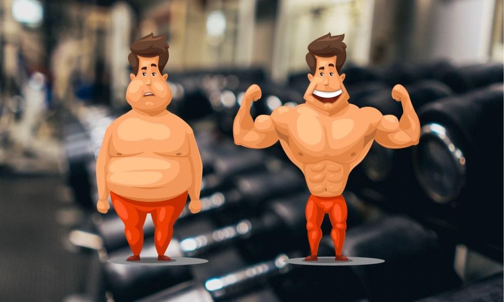 Fett in Muskeln umwandeln ist unmöglich - fett abbauen muskeln aufbauen gleichzeitig