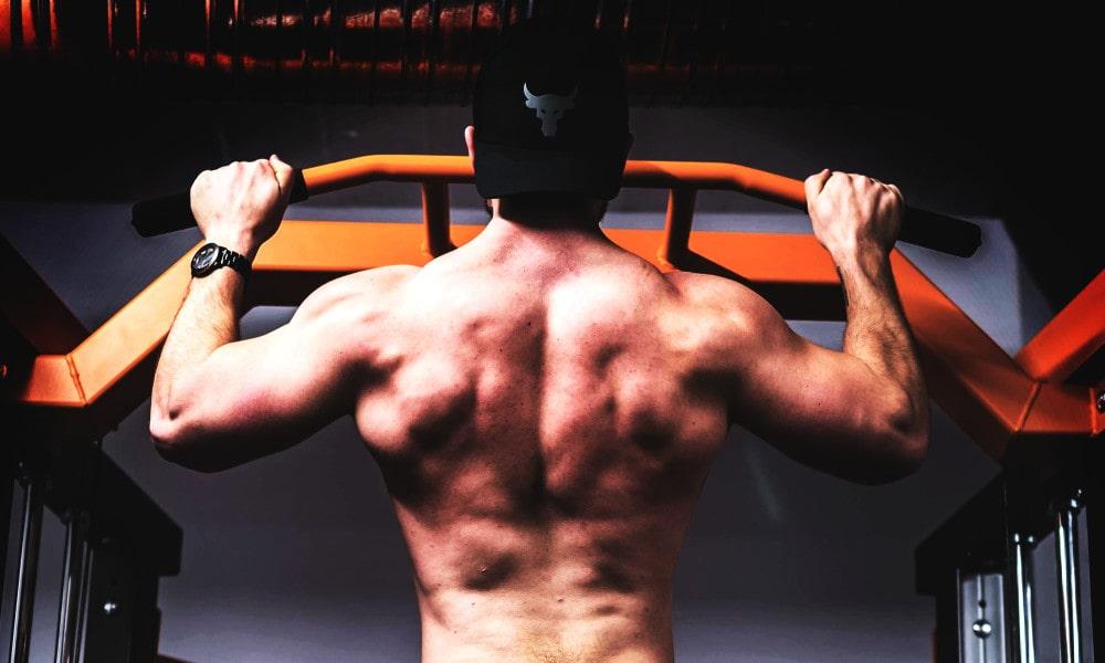 Klimmzüge - Diese Muskeln werden trainiert