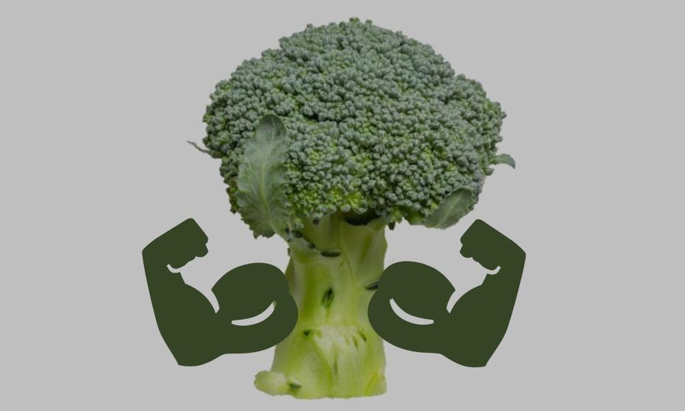Veganer Muskelaufbau ist nicht einfach aber möglich
